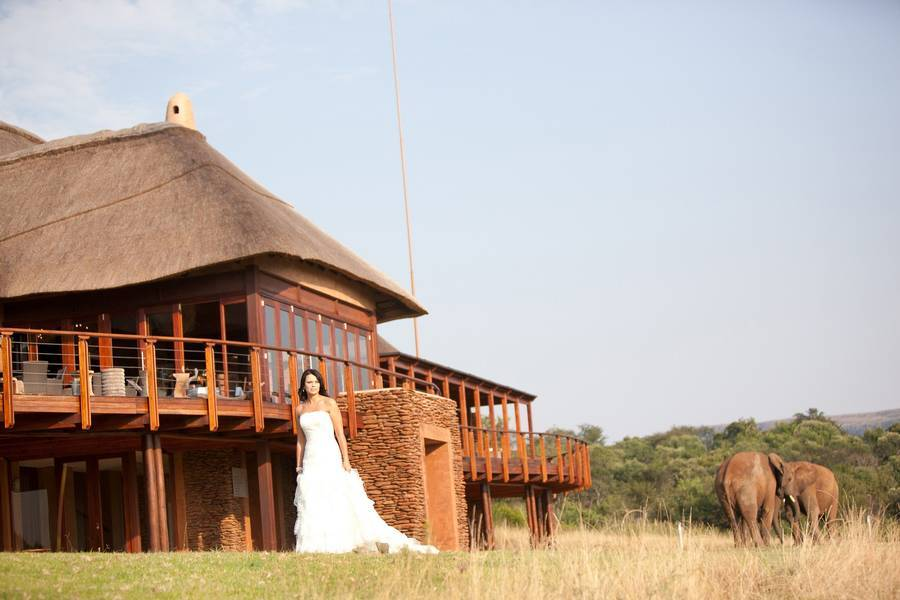 Askari Game Lodge and Spa